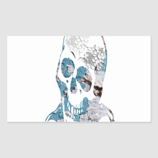 Eroded Skull with Turquoise Rectangular Sticker
