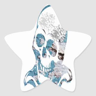 Eroded Skull with Turquoise Star Sticker