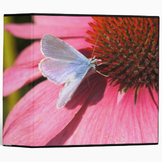 eros blue on pink flower 3 ring binder