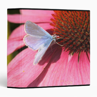 eros blue on pink flower binder