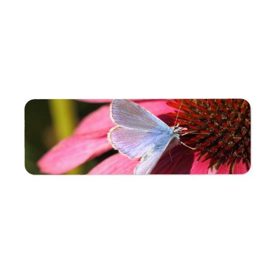 eros blue on pink flower label