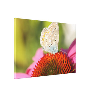 eros blue with closed wings canvas print