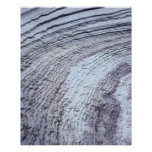 Erosion ,Zion National Park ,Utah 2 Poster