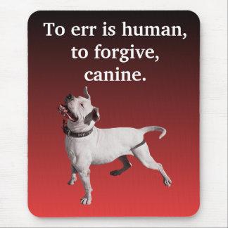 Errar es humano, perdonar, canino tapetes de raton