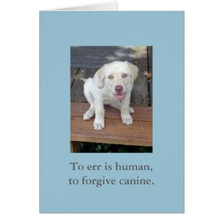 Errar es humano, perdonar la tarjeta canina del