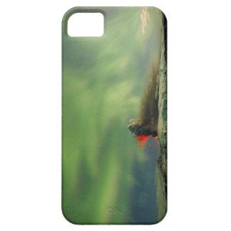 Erupción de la aurora boreal iPhone 5 Case-Mate funda