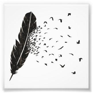 Erupción de los pájaros de una pluma fotografía