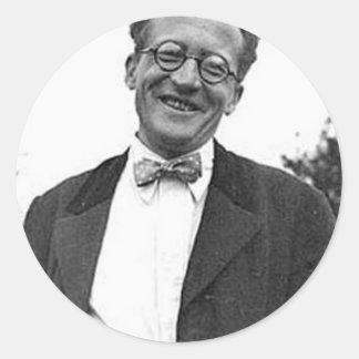 Erwin Schrodinger Pegatina Redonda