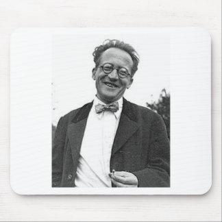 Erwin Schrodinger Alfombrilla De Ratón