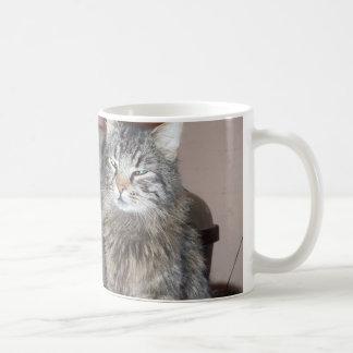 Es apenas café… que juro taza