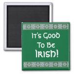 ¡Es bueno ser, irlandés! Imanes