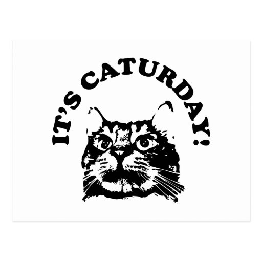 Es Caturday Tarjetas Postales