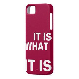 Es cuáles es iPhone 5 funda