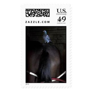 Es cuáles es sellos postales