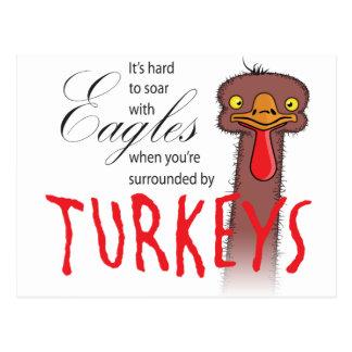 Es duro elevarse con Eagles… Postal