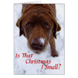 ¿Es ese el navidad I olor? Tarjeton