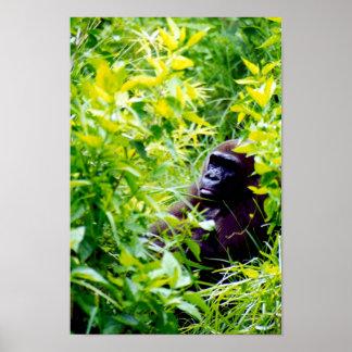 Es extraño ser un mono grande póster