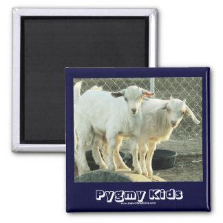 ¡Es gemelos - Niños enanos lindos de la cabra - o Imanes De Nevera