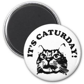 Es imán de Caturday