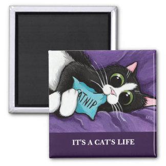 Es imán del arte del gato de la vida el | Personal