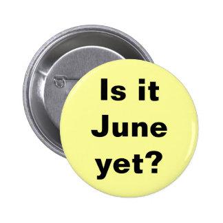 ¿Es junio? Botón Pin