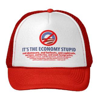 Es la economía estúpida… gorro de camionero