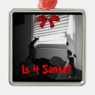 ¿Es Santa? Gatos - Abbie y ornamento del navidad Adorno Cuadrado Plateado