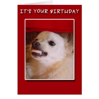 ¡Es su cumpleaños! Mueca de la tarjeta de cumpleañ