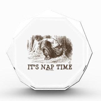 Es tiempo de la siesta (rey rojo Snoring del país