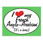¡Es un caballo! Amo mi Anglo-Árabe francés Tarjeta Postal