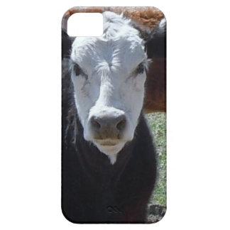 ¡Es un rodeo El ganado blanco negro acobarda bece iPhone 5 Carcasas