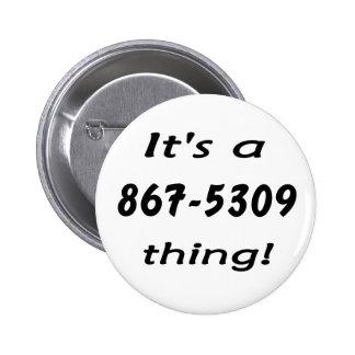 es una cosa 867-5309 pin
