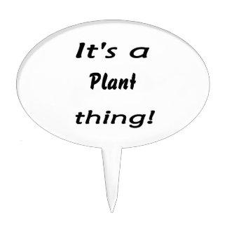 ¡Es una cosa de la planta Palillos De Tarta