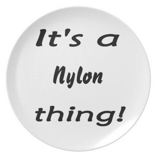 ¡Es una cosa de nylon! Platos Para Fiestas