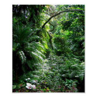 Es una selva hacia fuera allí ..... posters
