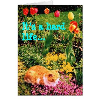 Es una vida dura… tarjeta de felicitación