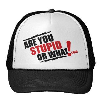 Es usted estúpido o qué logotipo para la reventa gorro de camionero