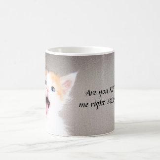 ¿Es usted gatito yo maullido correcto??? Taza de