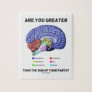 ¿Es usted mayor que la suma de sus piezas? Cerebro Rompecabezas Con Fotos