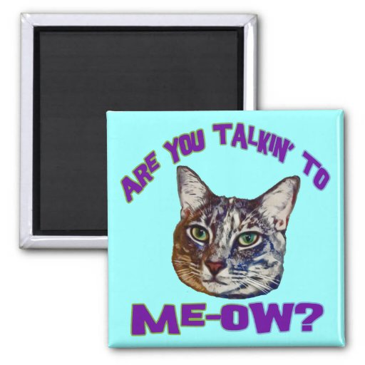 ¿Es usted Talkin a me-ow? Imán
