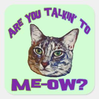 ¿Es usted Talkin a me-ow? Pegatina Cuadrada
