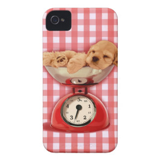 Escala cocker spaniel Case-Mate iPhone 4 protectores