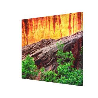 Escalante Neon Canyon and Foliage | Utah Canvas Print
