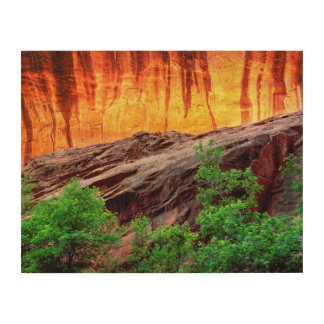 Escalante Neon Canyon and Foliage | Utah Wood Print
