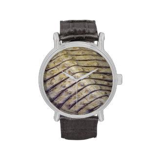 escalas de la parte posterior del cocodrilo del al relojes de pulsera