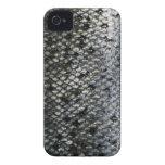 Escalas de pescados iPhone 4 carcasas