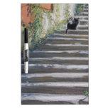 Escalera al gato negro de Toscana Pizarras