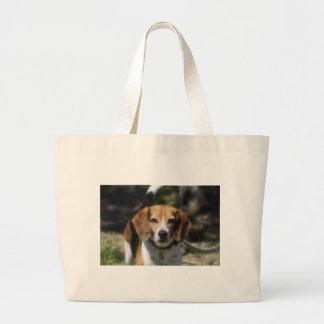 Escalera del beagle bolsas
