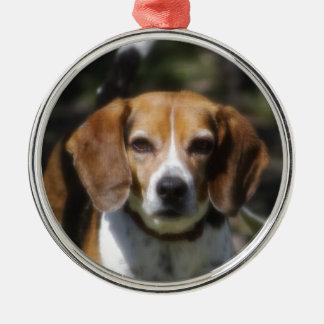 Escalera del beagle ornamentos de reyes magos