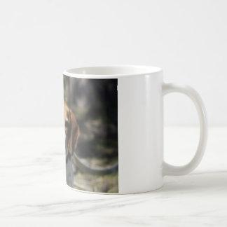 Escalera del beagle tazas de café